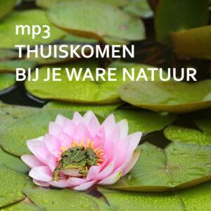 mp3 thuiskomen bij je ware natuur